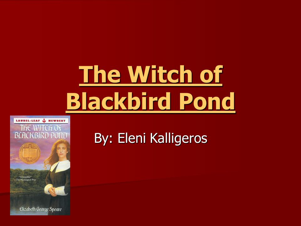 The Witch of Blackbird Pond By: Eleni Kalligeros