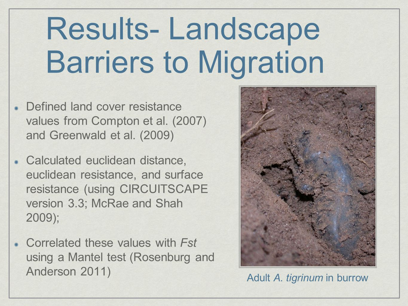 Results- Landscape Barriers to Migration Defined land cover resistance values from Compton et al. (2007) and Greenwald et al. (2009) Calculated euclid