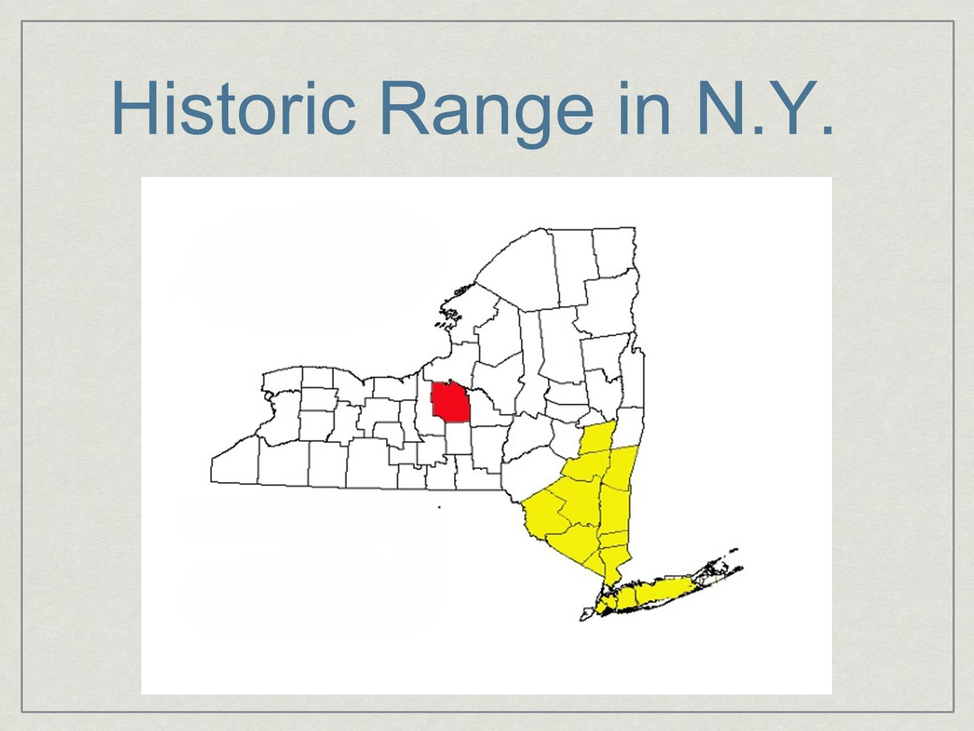 Conclusions 3 distinct genetic demes; while evidence of admixture, this is likely due to ancestral polymorphism rather than gene flow between NY and NJ The second NY deme is centrally located and within 10 m of each other; likely caused by wetland remediation from 2005-2007