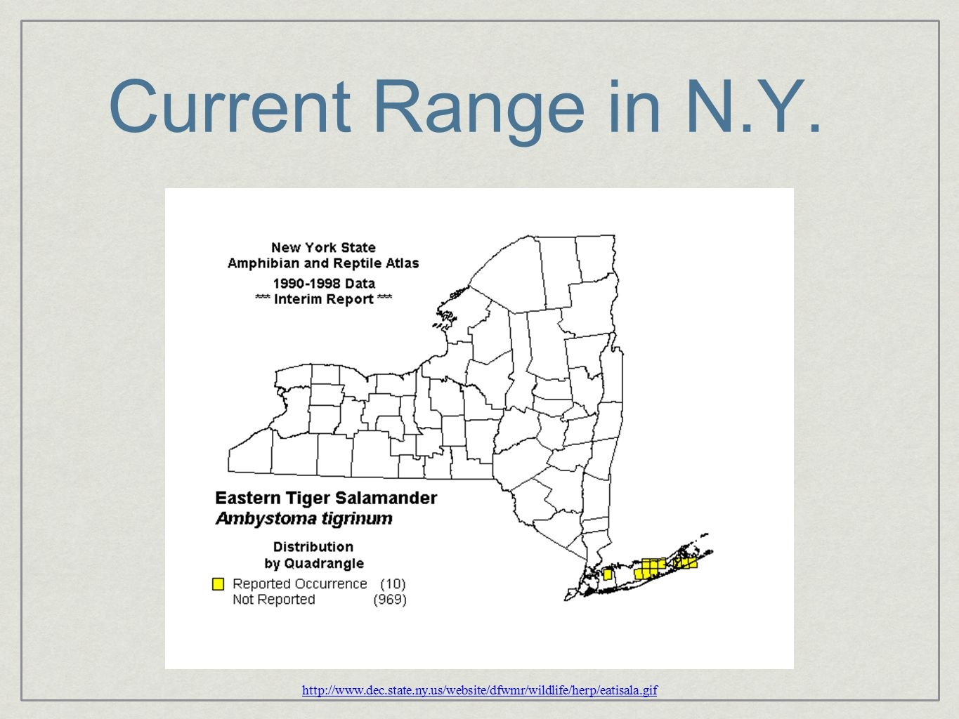 Conclusions Assignment probabilities provide evidence of recent migration between several ponds Difference between NY and NJ is likely due to distance between ponds Corridors appear to be present in both NY and NJ, but no relationship between distance/land cover and Fst