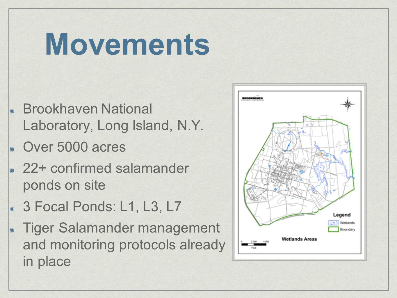 Brookhaven National Laboratory, Long Island, N.Y.