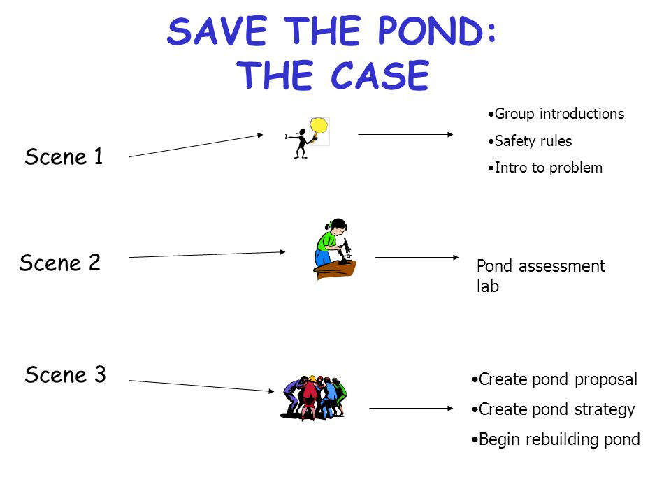 SAVE THE POND: THE CASE Scene 1 Group introductions Safety rules Intro to problem Scene 2 Pond assessment lab Scene 3 Create pond proposal Create pond strategy Begin rebuilding pond