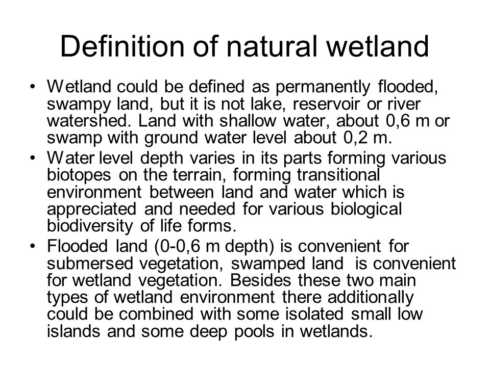 Definition of natural wetland Wetland could be defined as permanently flooded, swampy land, but it is not lake, reservoir or river watershed.