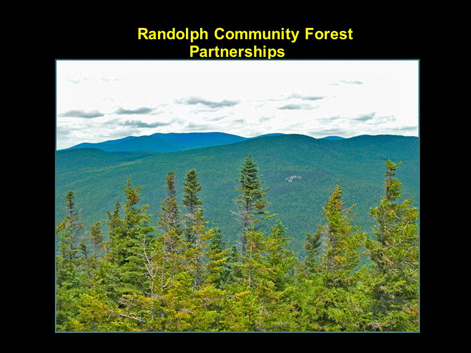 Randolph Community Forest Partnerships