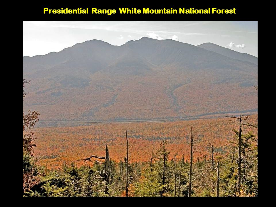 Presidential Range White Mountain National Forest