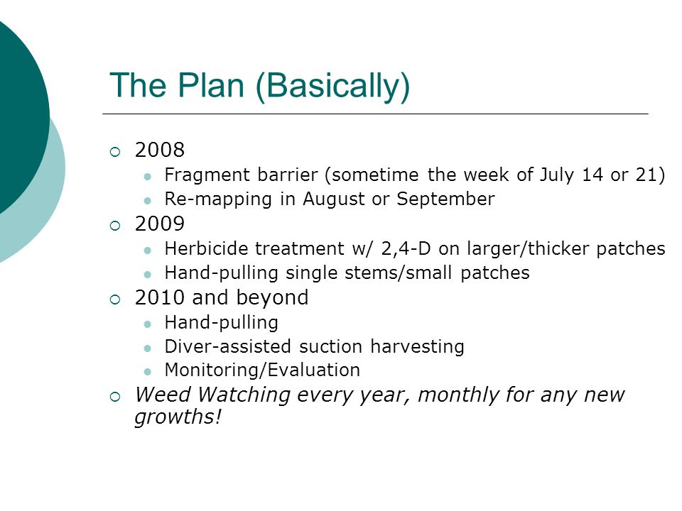 The Plan (Basically)  2008 Fragment barrier (sometime the week of July 14 or 21) Re-mapping in August or September  2009 Herbicide treatment w/ 2,4-D on larger/thicker patches Hand-pulling single stems/small patches  2010 and beyond Hand-pulling Diver-assisted suction harvesting Monitoring/Evaluation  Weed Watching every year, monthly for any new growths!
