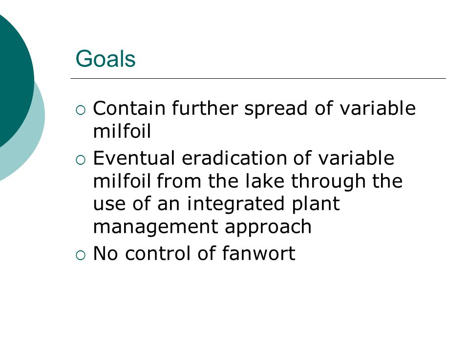 Goals  Contain further spread of variable milfoil  Eventual eradication of variable milfoil from the lake through the use of an integrated plant management approach  No control of fanwort