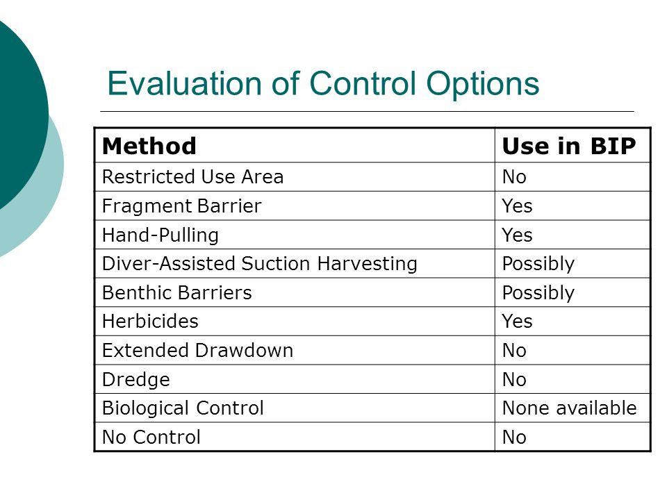 Evaluation of Control Options MethodUse in BIP Restricted Use AreaNo Fragment BarrierYes Hand-PullingYes Diver-Assisted Suction HarvestingPossibly Benthic BarriersPossibly HerbicidesYes Extended DrawdownNo DredgeNo Biological ControlNone available No ControlNo
