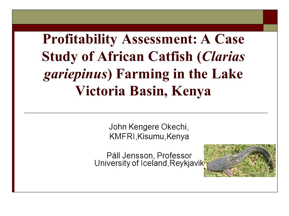 One pond production model Production data on monoculture of the African catfish, density 5 fingerlings m 2, mean temperature 25-27 °C