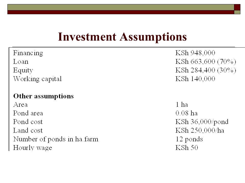 Production Assumptions