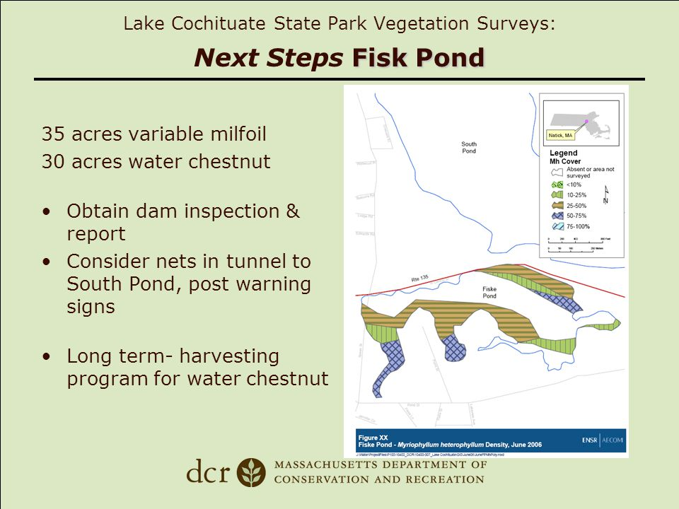 Fisk Pond Lake Cochituate State Park Vegetation Surveys: Next Steps Fisk Pond 35 acres variable milfoil 30 acres water chestnut Obtain dam inspection & report Consider nets in tunnel to South Pond, post warning signs Long term- harvesting program for water chestnut