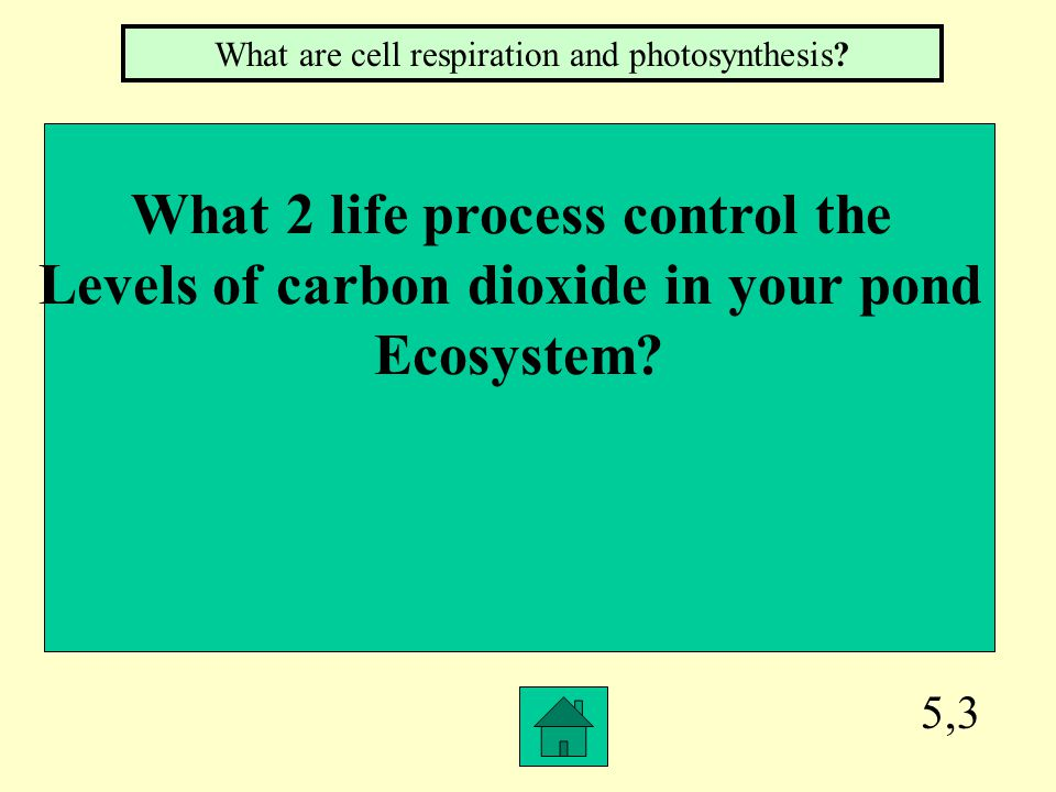 5,2 Ammonia produces alkaline conditions. Why is limestone NOT a good buffer Against this process.