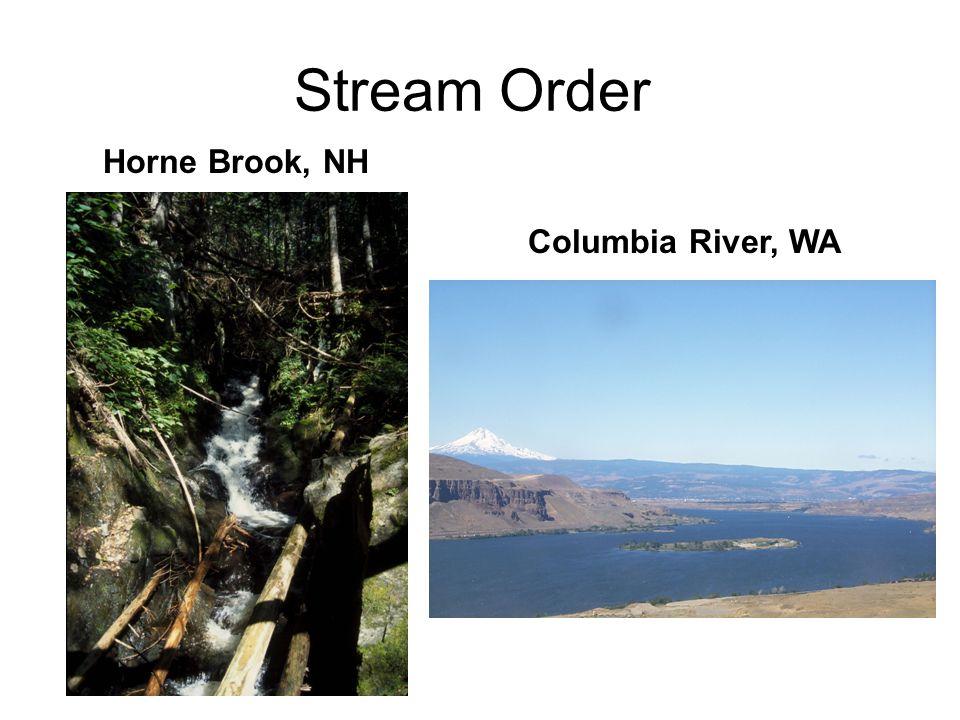 Stream Order Horne Brook, NH Columbia River, WA