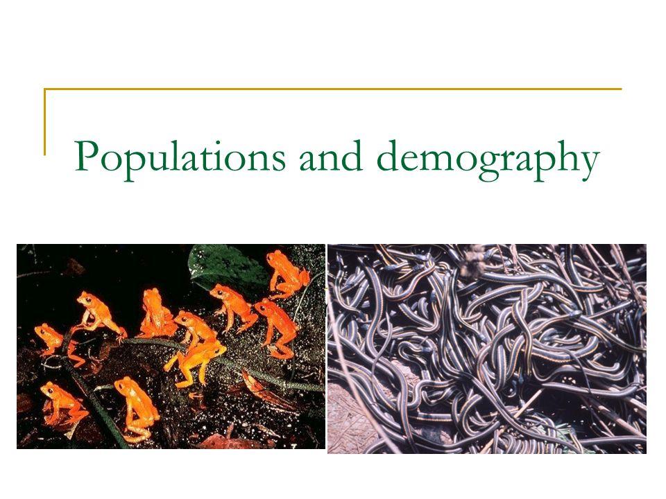 Population fluctuations Breeding females Metamorphosing juveniles Pechmann et al. 1991