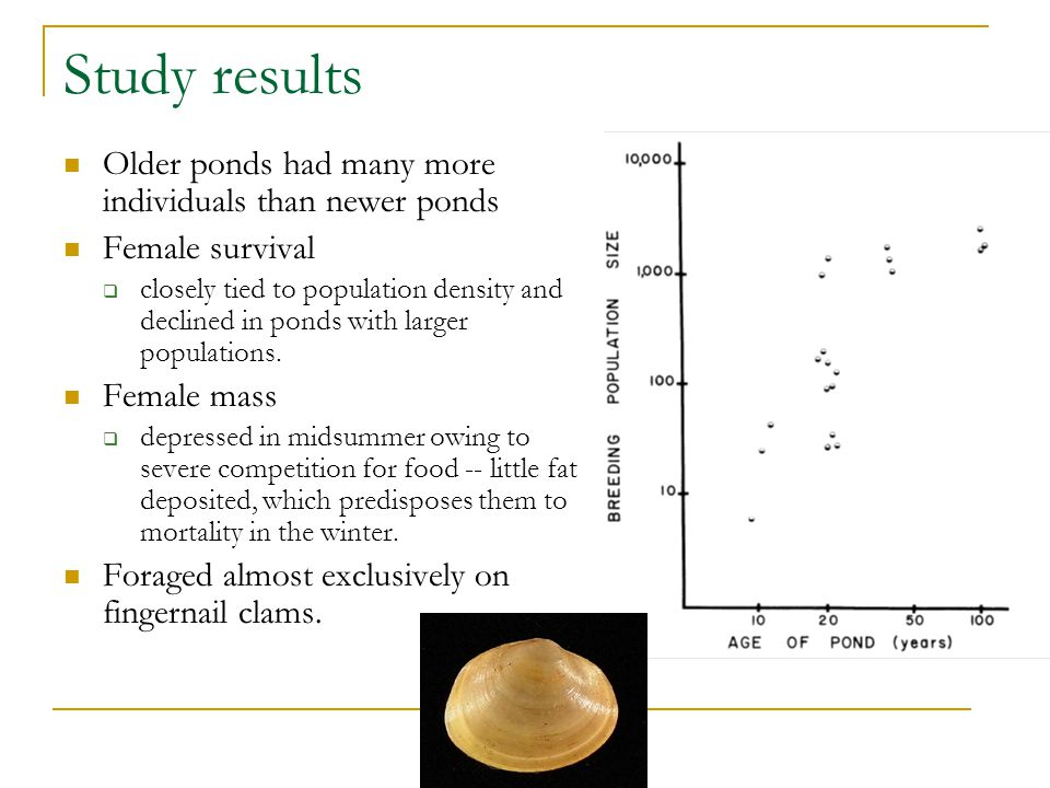 Study results Older ponds had many more individuals than newer ponds Female survival  closely tied to population density and declined in ponds with larger populations.