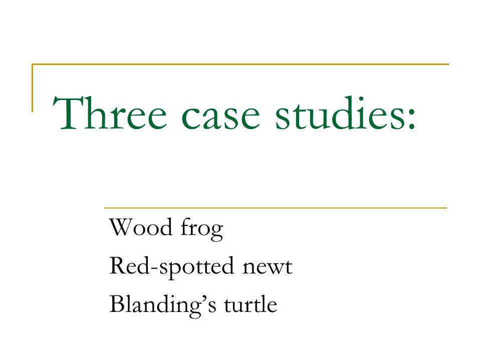 Case Study I: Wood frog (Rana sylvatica)