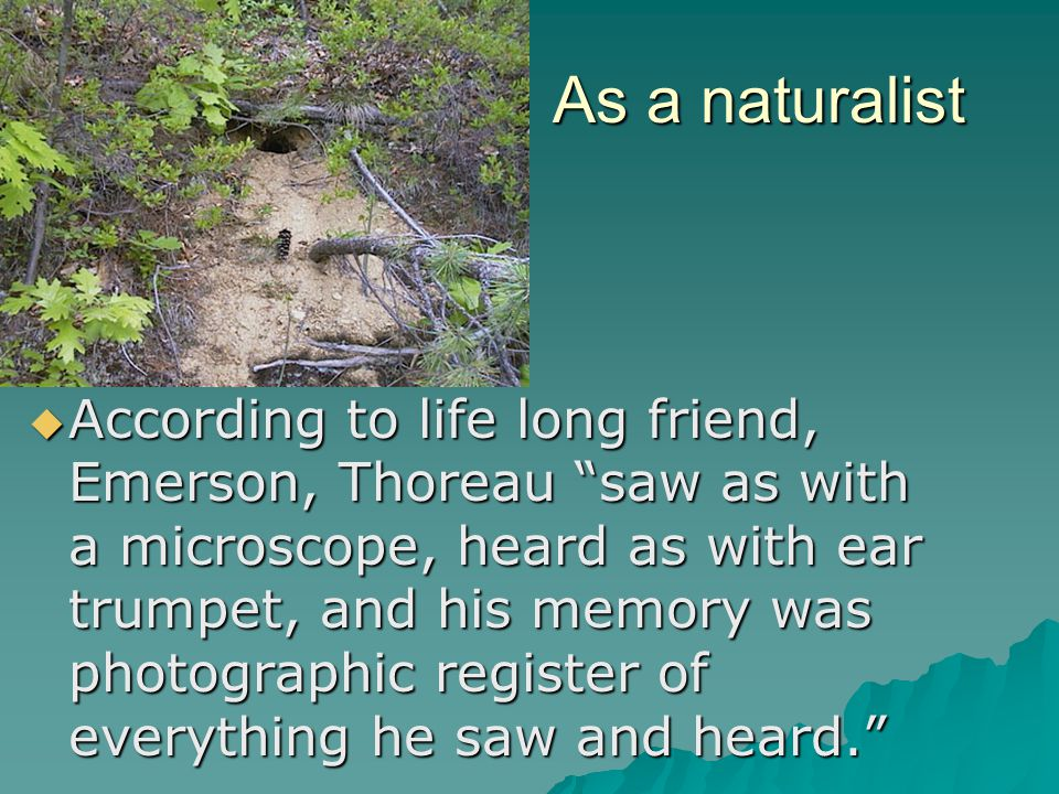 As a practitioner  Thoreau tried to live the transcendentalist philosophies  Wanted to put Emerson's ideas into practice  Rejected his schooling and the expectations that came with it (appeared idle)  Even Emerson claimed at Thoreau's funeral that he lacked ambition