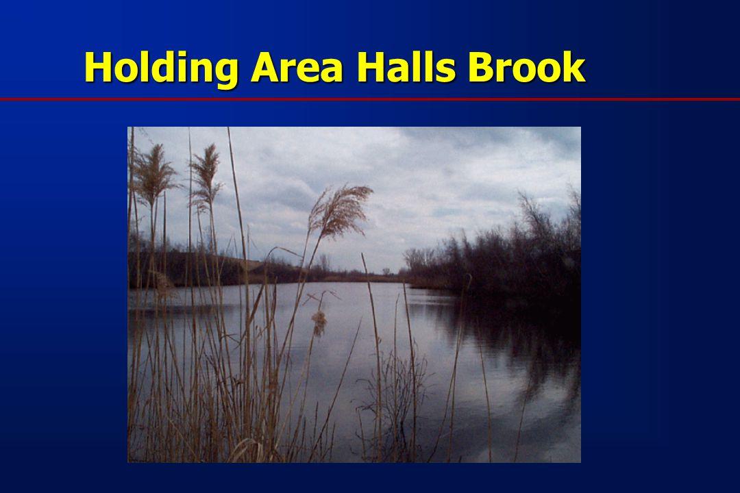 Holding Area Halls Brook