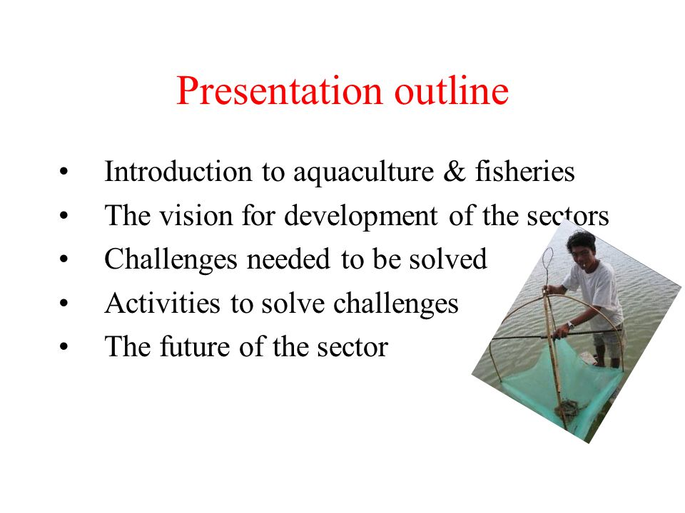Presentation outline Introduction to aquaculture & fisheries The vision for development of the sectors Challenges needed to be solved Activities to so