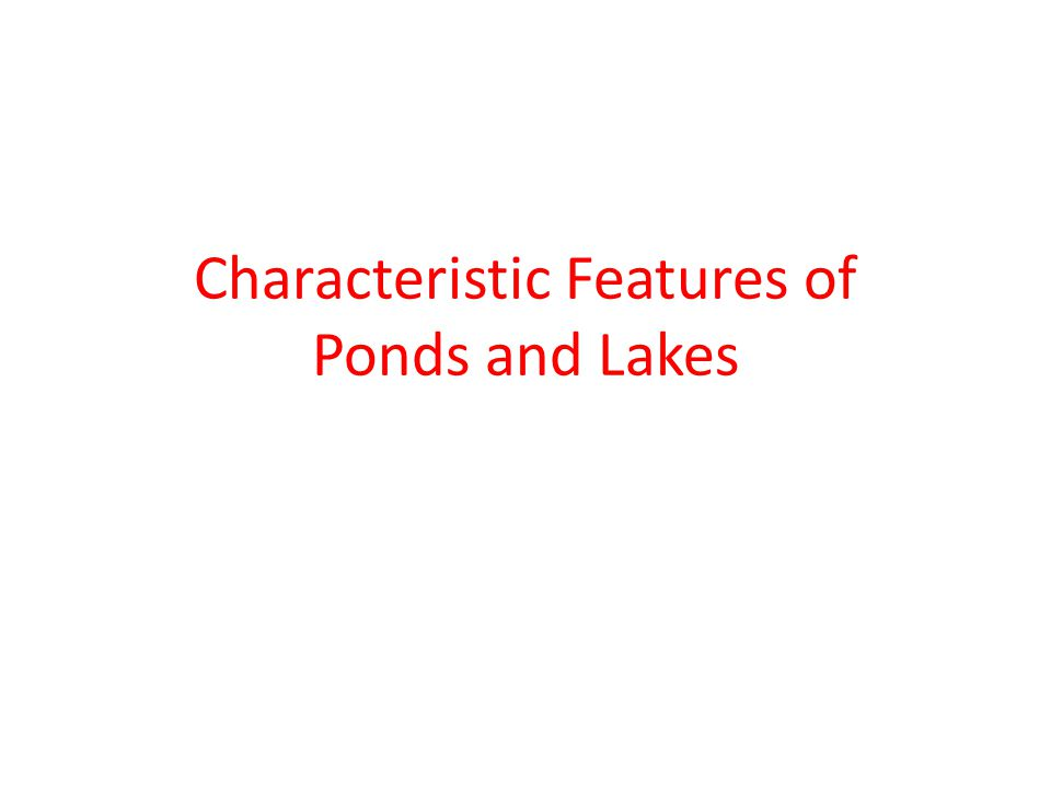 Characteristic Features of Ponds and Lakes