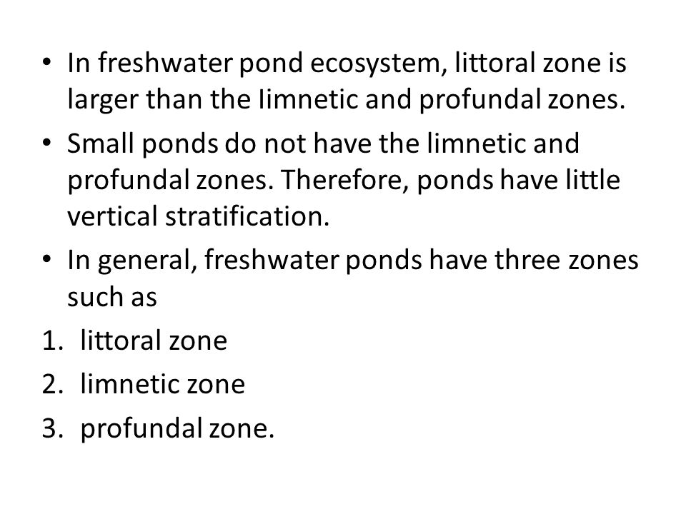 In freshwater pond ecosystem, littoral zone is larger than the Iimnetic and profundal zones.
