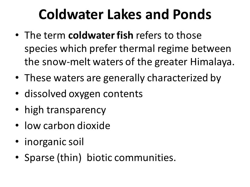 Coldwater Lakes and Ponds The term coldwater fish refers to those species which prefer thermal regime between the snow-melt waters of the greater Himalaya.