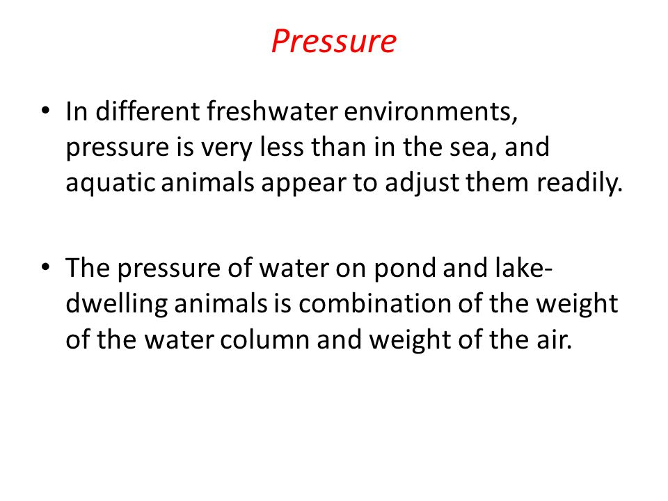 Buoyancy The buoyancy of aquatic animals is equal to the weight of the water it displaces.