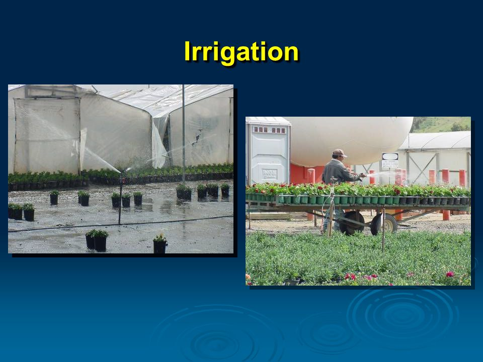 IrrigationIrrigation