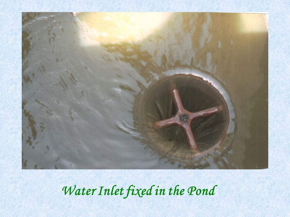 Water Inlet fixed in the Pond