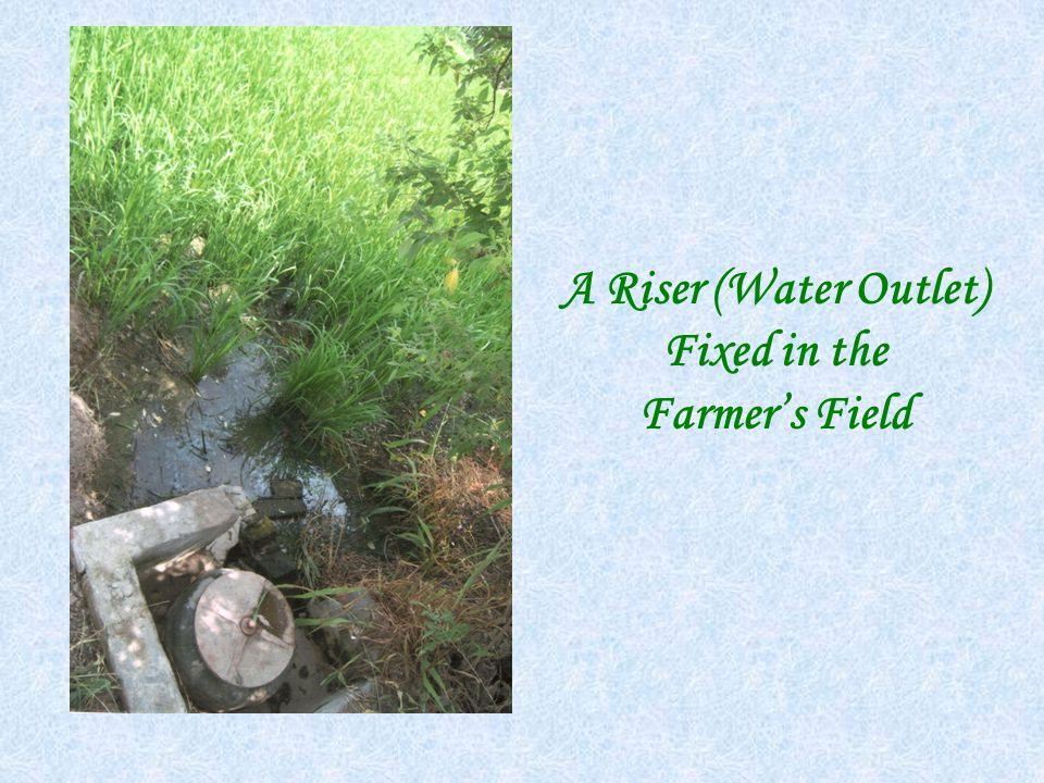 A Riser (Water Outlet) Fixed in the Farmer's Field