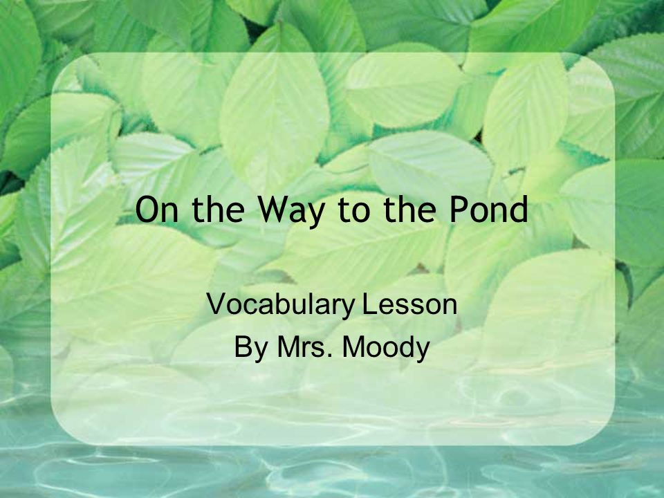 On the Way to the Pond Vocabulary Lesson By Mrs. Moody