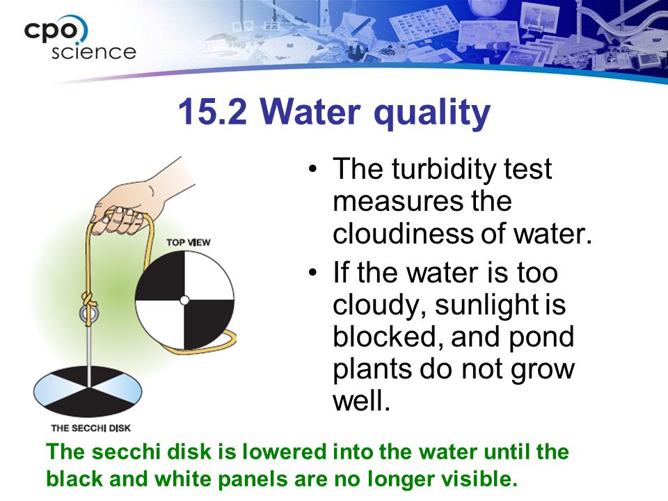 15.2 Water quality The turbidity test measures the cloudiness of water. If the water is too cloudy, sunlight is blocked, and pond plants do not grow w