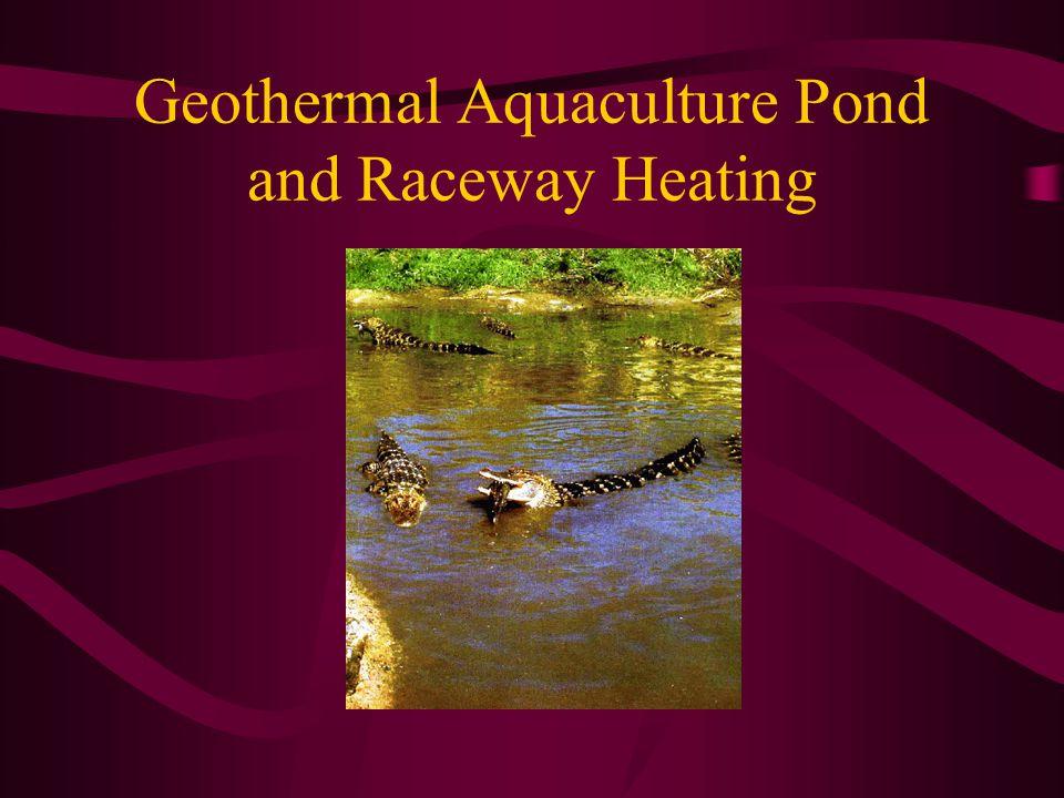 Geothermal Aquaculture Pond and Raceway Heating