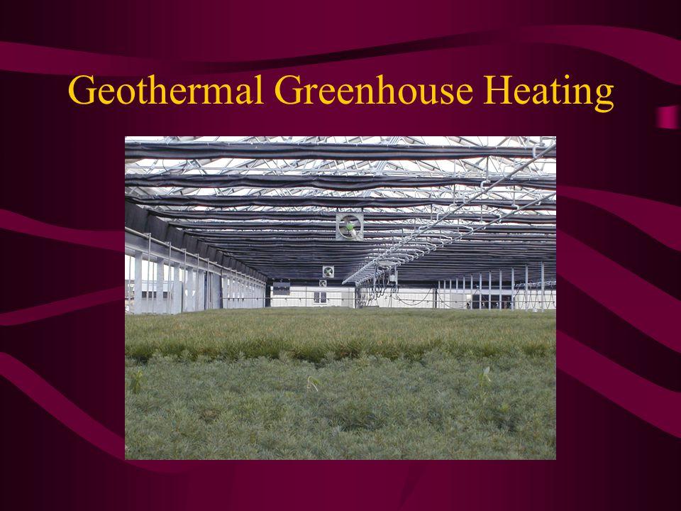 Geothermal Greenhouse Heating