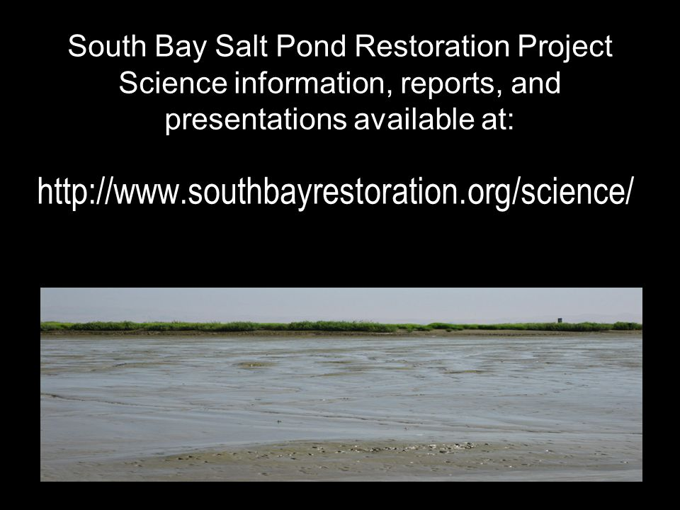 South Bay Salt Pond Restoration Project Science information, reports, and presentations available at: http://www.southbayrestoration.org/science/