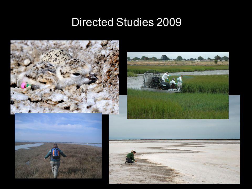 Directed Studies 2009
