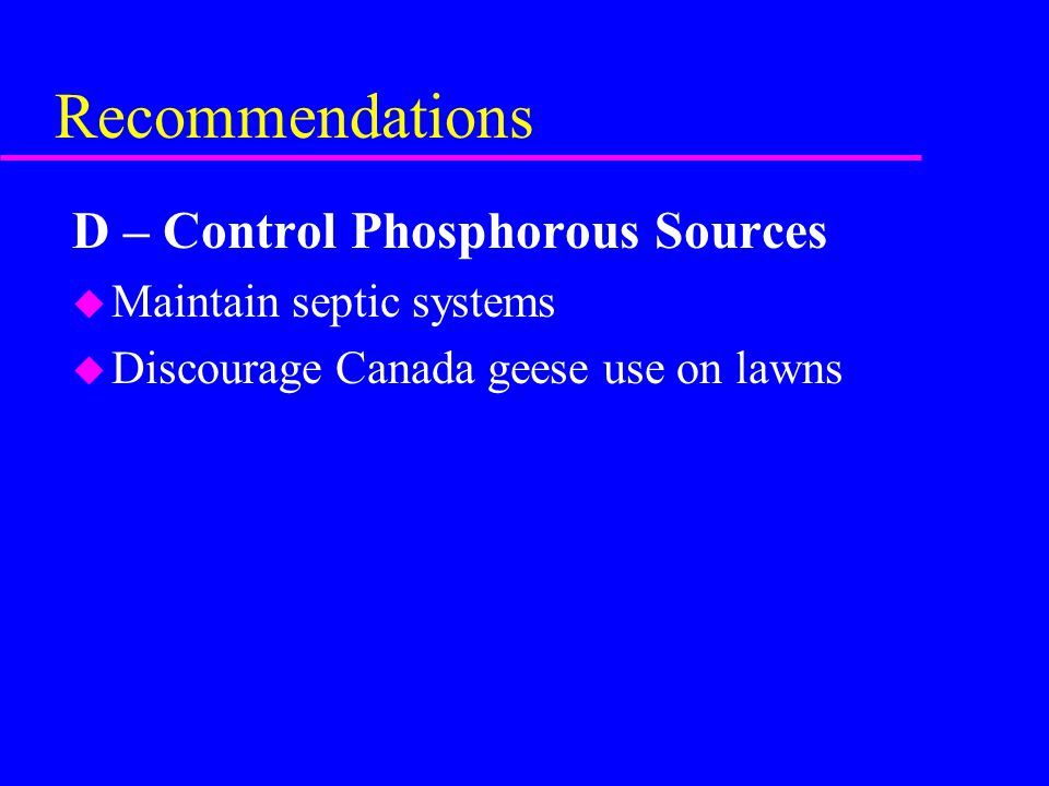 Recommendations D – Control Phosphorous Sources u Maintain septic systems u Discourage Canada geese use on lawns