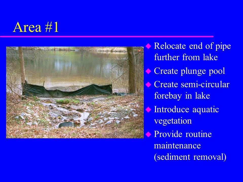 Area #1 u Relocate end of pipe further from lake u Create plunge pool u Create semi-circular forebay in lake u Introduce aquatic vegetation u Provide