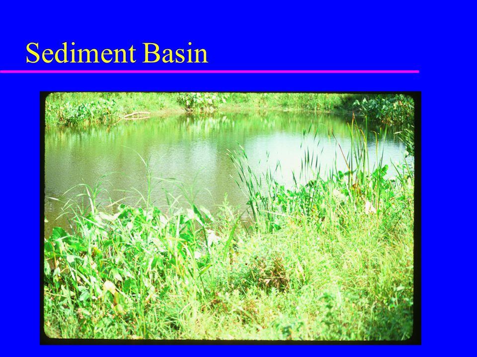 Sediment Basin