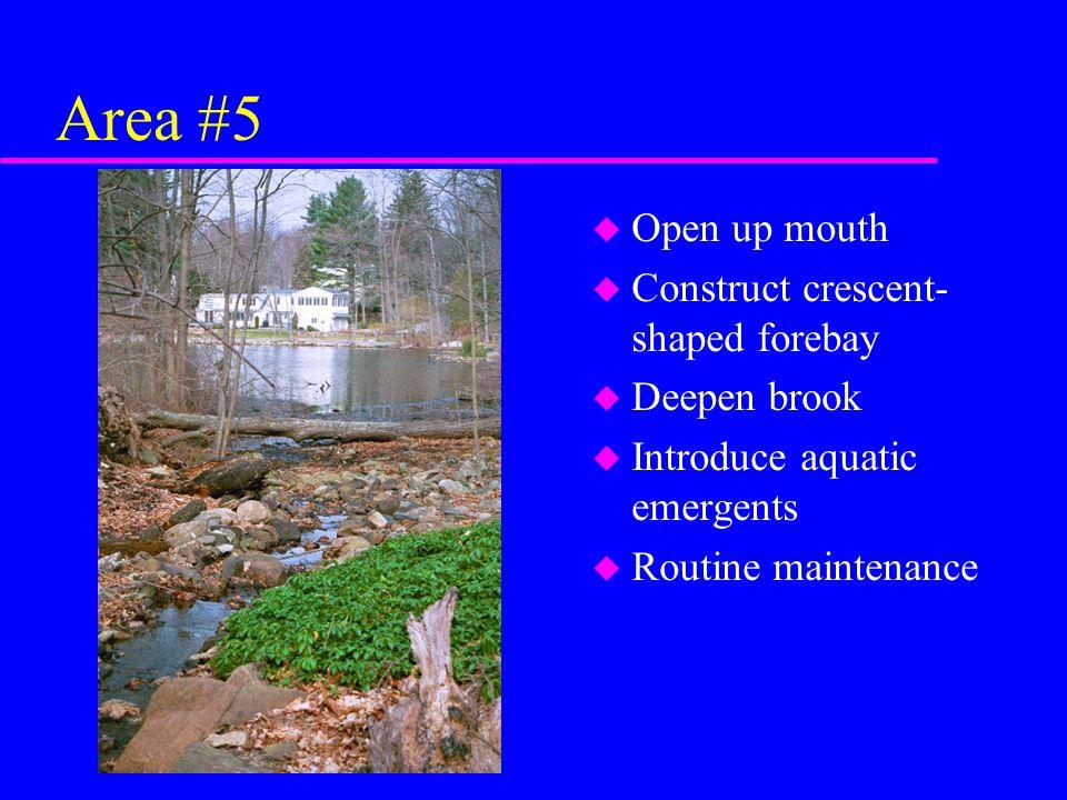 Area #5 u Open up mouth u Construct crescent- shaped forebay u Deepen brook u Introduce aquatic emergents u Routine maintenance