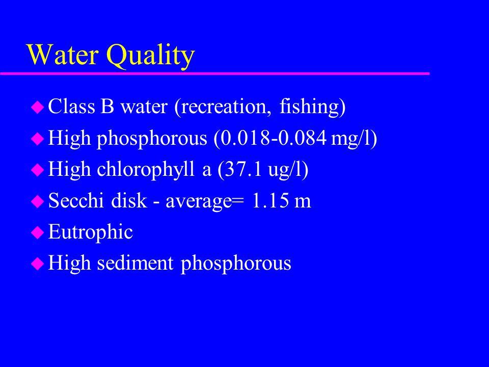 Water Quality u Class B water (recreation, fishing) u High phosphorous (0.018-0.084 mg/l) u High chlorophyll a (37.1 ug/l) u Secchi disk - average= 1.15 m u Eutrophic u High sediment phosphorous