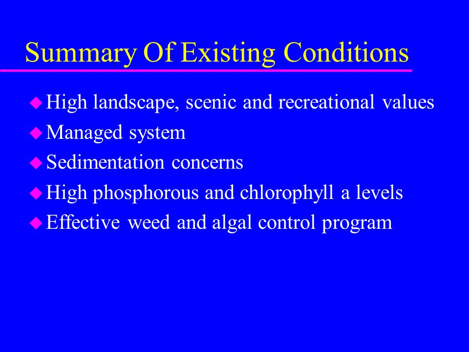 Summary Of Existing Conditions u High landscape, scenic and recreational values u Managed system u Sedimentation concerns u High phosphorous and chlorophyll a levels u Effective weed and algal control program