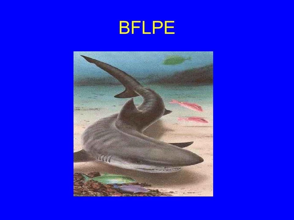 BFLPE