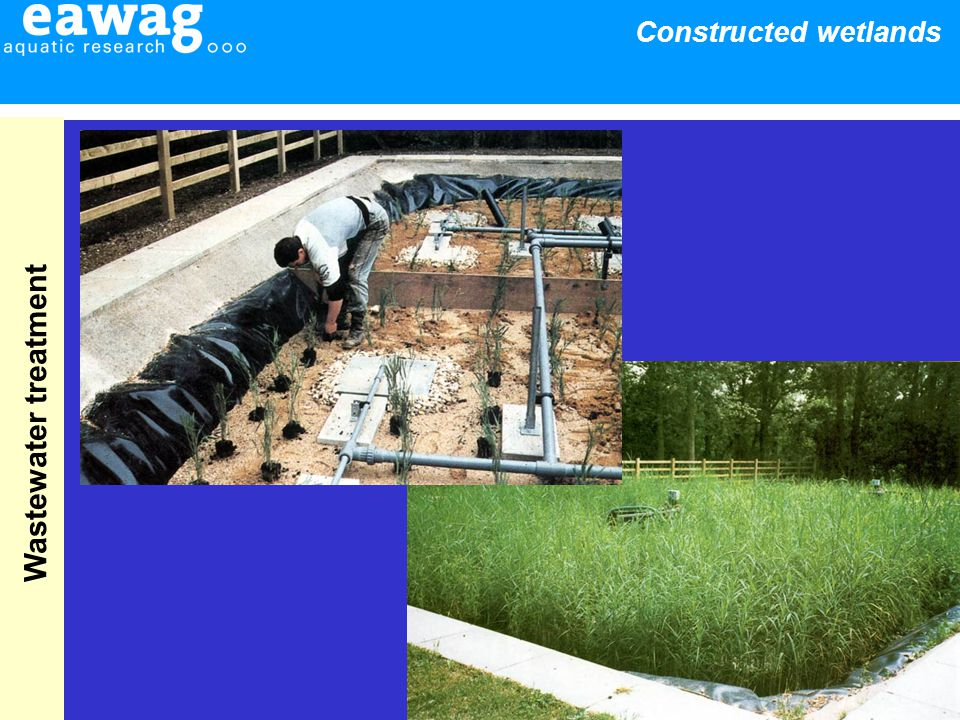 23 Constructed wetlands Wastewater treatment