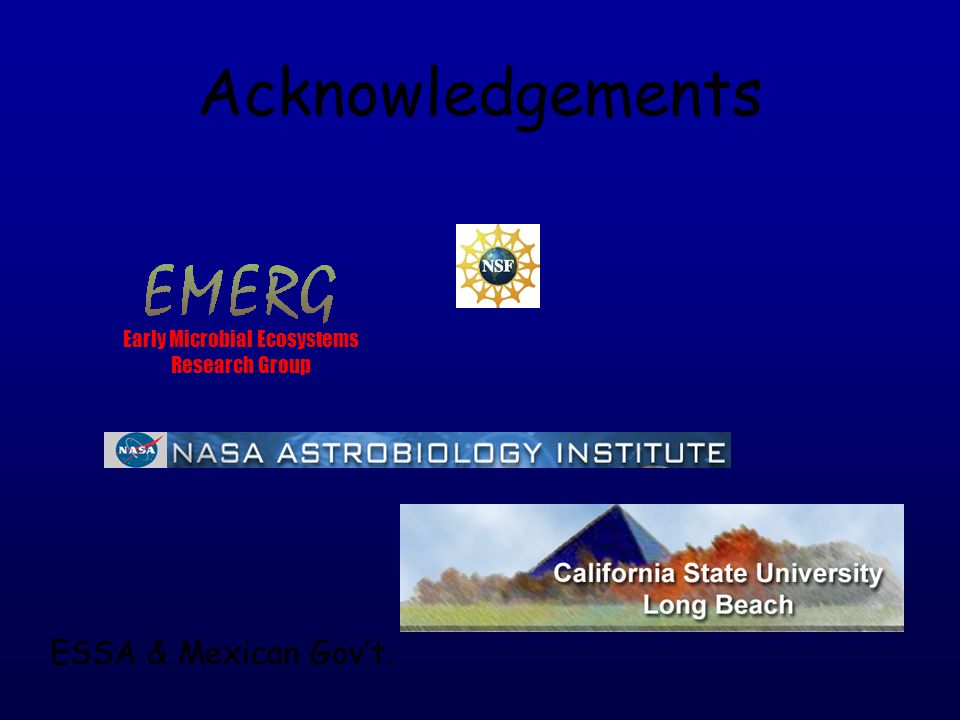 Acknowledgements Early Microbial Ecosystems Research Group ESSA & Mexican Gov't.