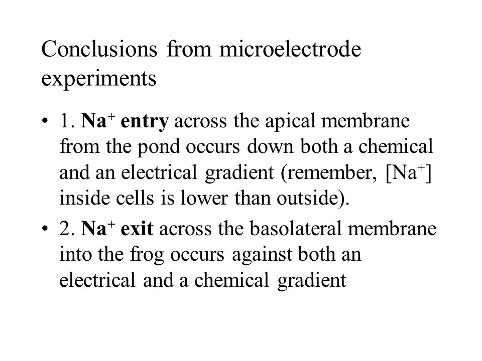 Conclusions from microelectrode experiments 1.