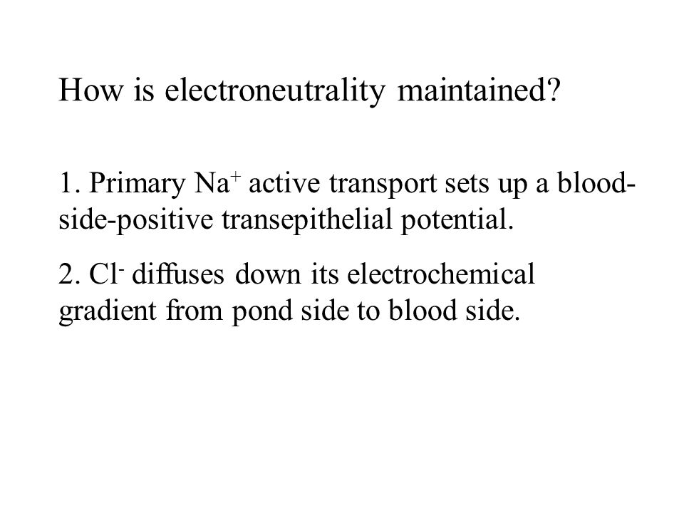 How is electroneutrality maintained. 1.