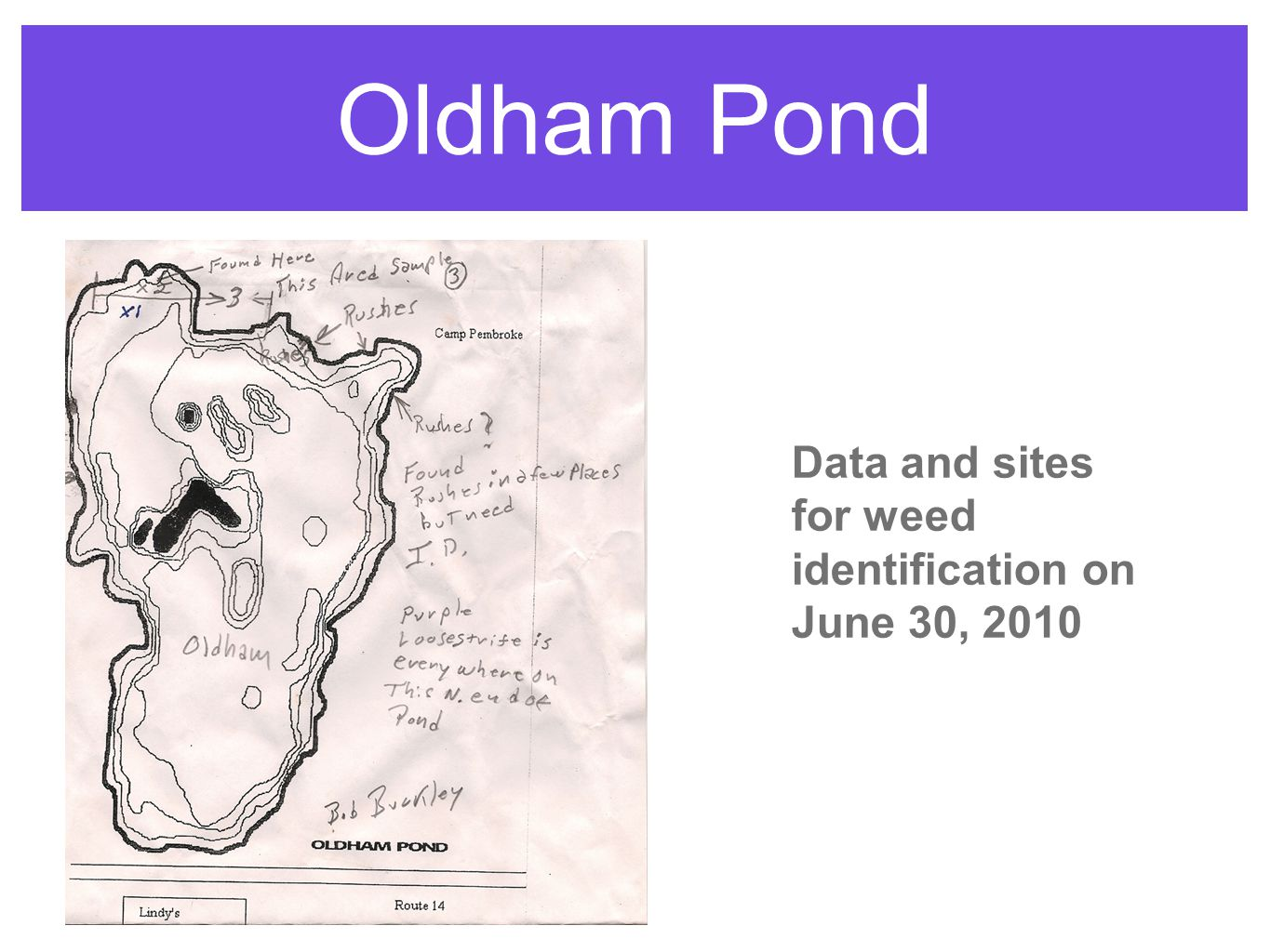 Oldham Pond Data and sites for weed identification on June 30, 2010