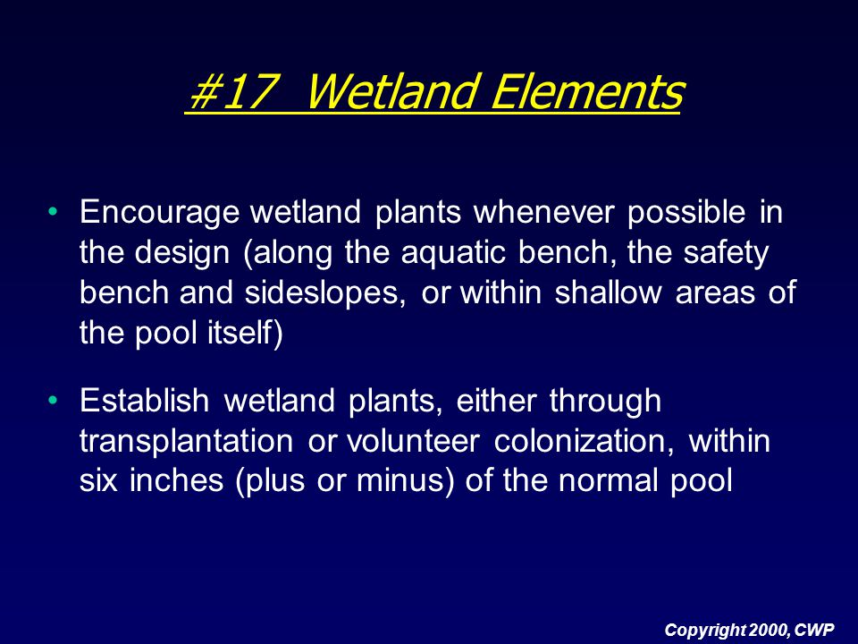 #17 Wetland Elements Encourage wetland plants whenever possible in the design (along the aquatic bench, the safety bench and sideslopes, or within sha