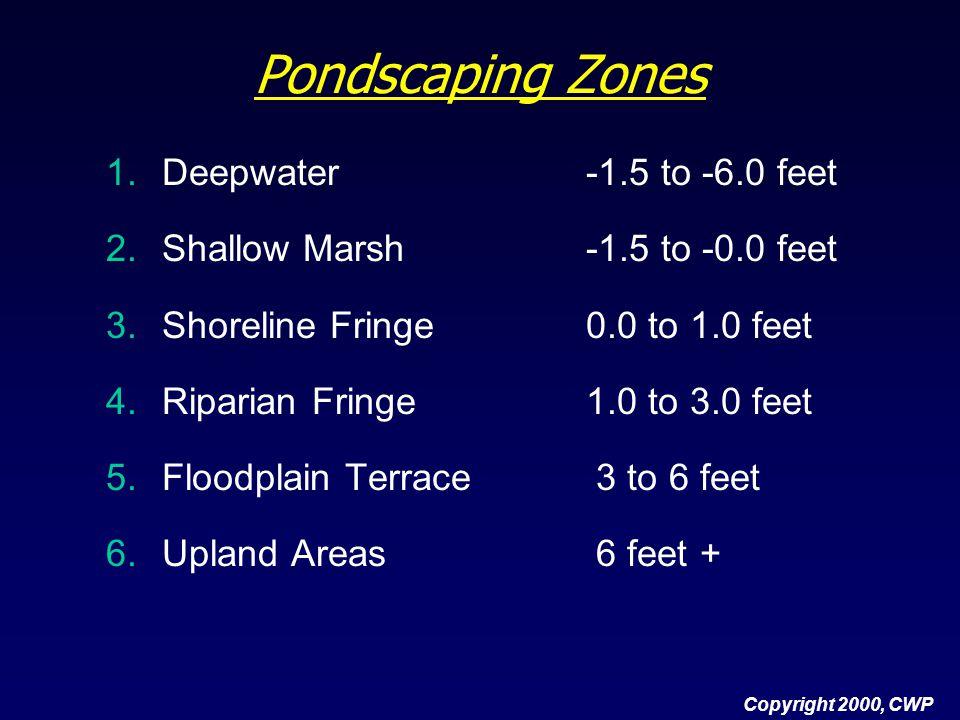 Pondscaping Zones 1.Deepwater-1.5 to -6.0 feet 2.Shallow Marsh-1.5 to -0.0 feet 3.Shoreline Fringe0.0 to 1.0 feet 4.Riparian Fringe1.0 to 3.0 feet 5.F